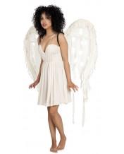 skrzydła upadły anioł